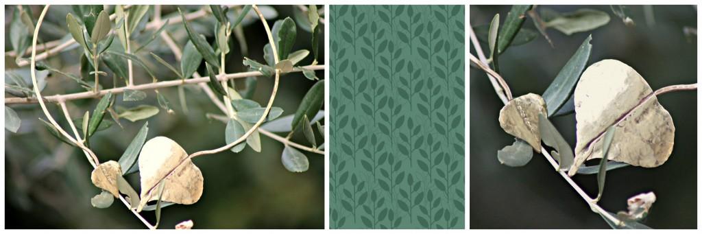 PicMonkey Collage girocollo foglia