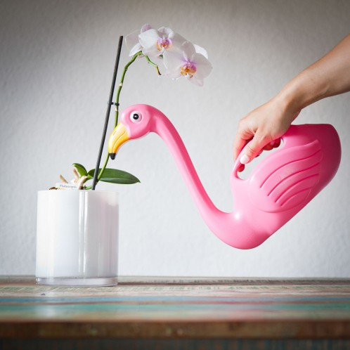 flamingo_watering_regaliperlafestadellamamma_3