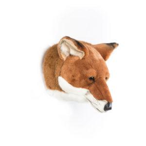 fox-head-2-300x300